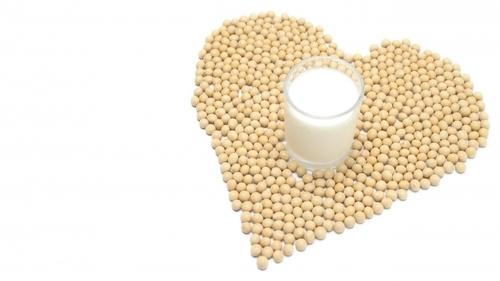 豆乳の栄養と寒天の栄養